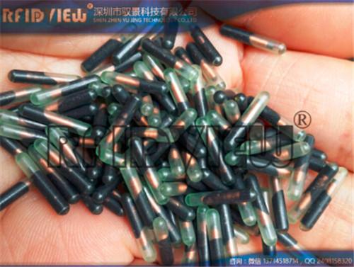 低频动物晶片