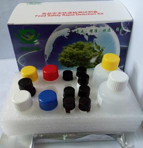 SNCg试剂盒