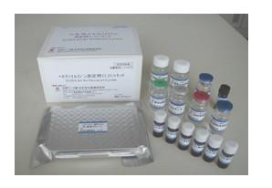 RUNX2试剂盒