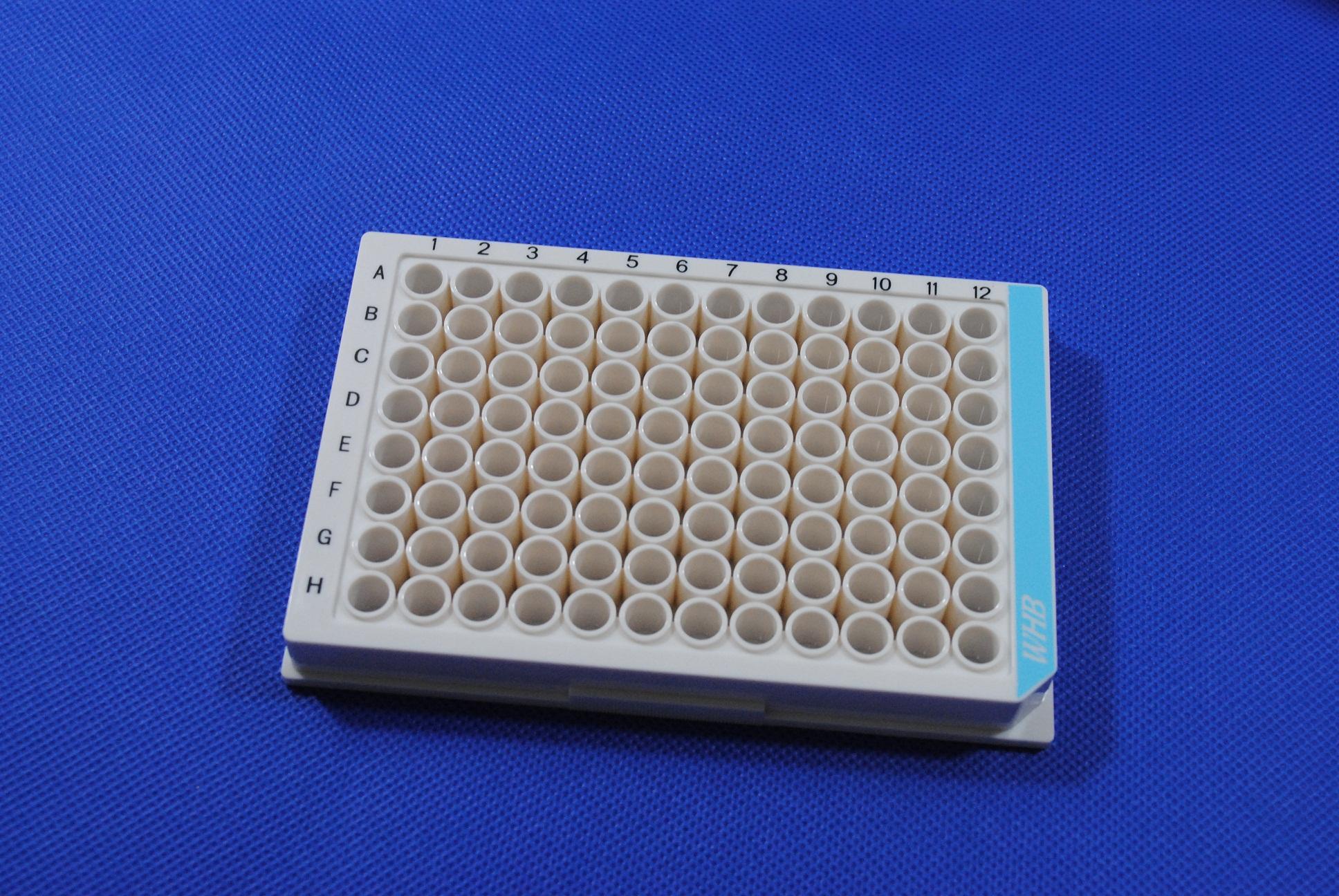 WHB 96孔全白细胞培养板
