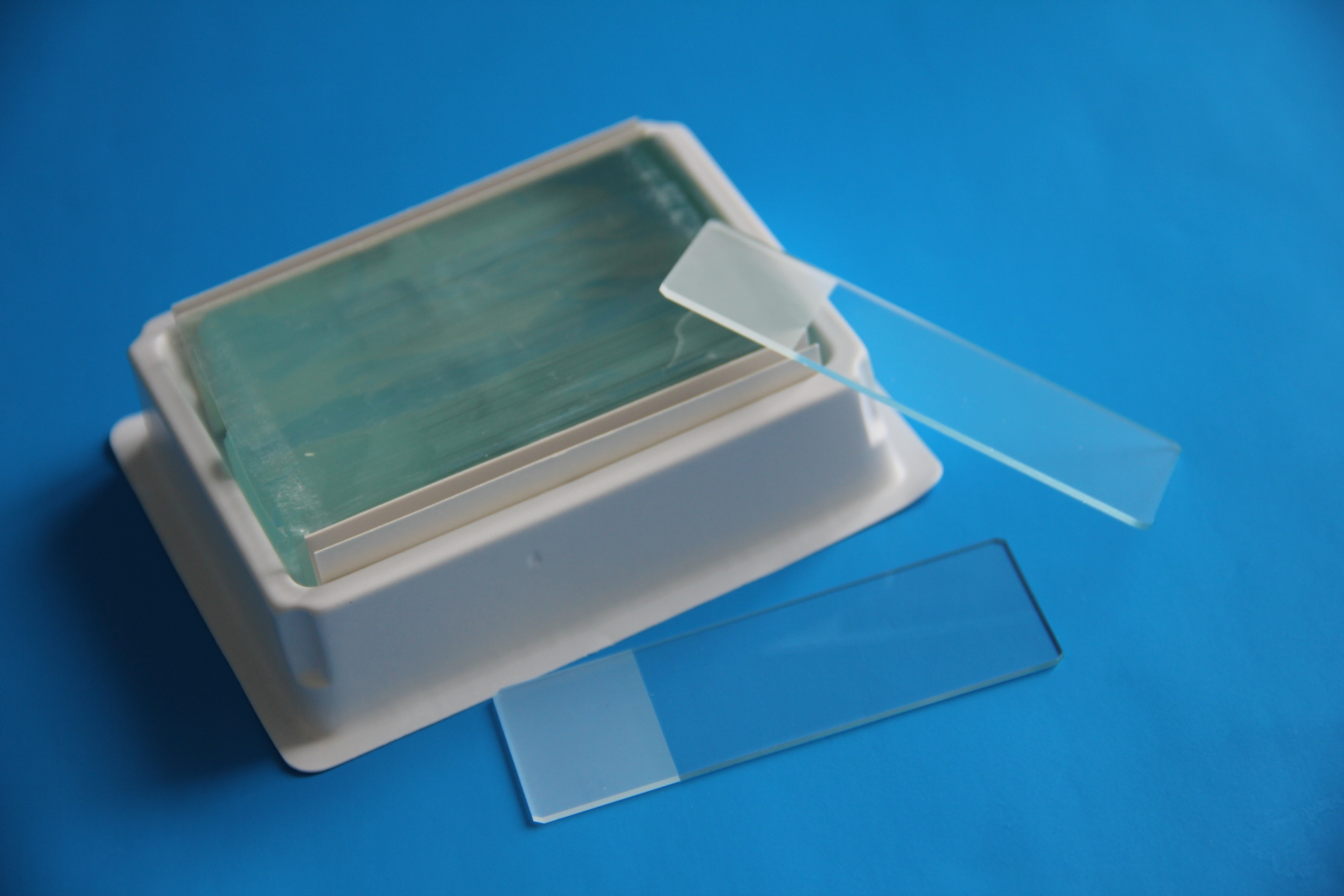WHB防脱载玻片,粘附载玻片正电荷 50片/盒 可开票 高透载玻片
