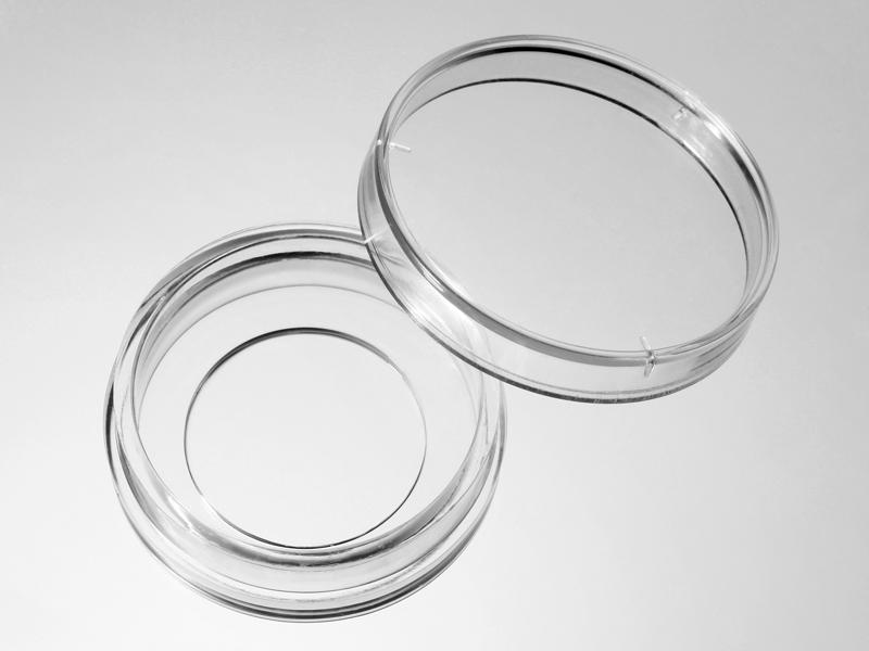 D29-20-1-N  29mm玻璃底细胞培养皿