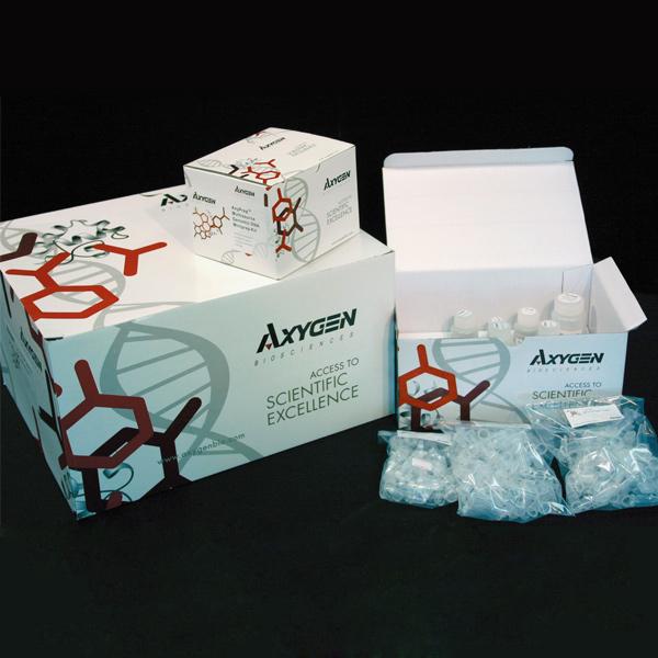 人精氨酸加压素(AVP)ELISA试剂盒 ELISA试剂盒