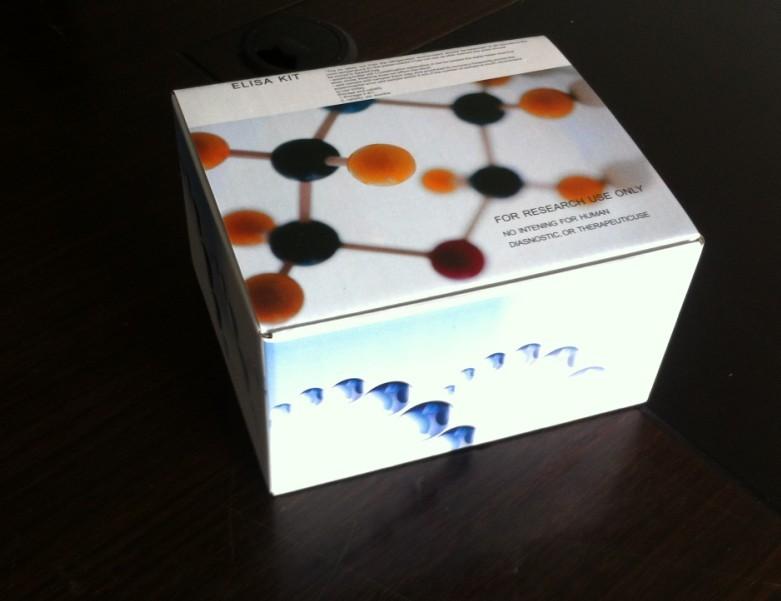 大鼠糖化血红蛋白A1c(GHbA1c)ELISA试剂盒