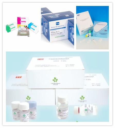 人甘露糖受体C2 (MRC2)ELISA试剂盒