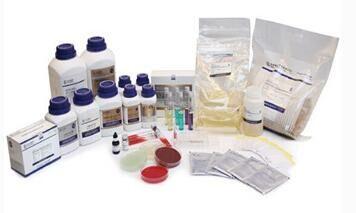紫红胆盐葡萄糖琼脂培养基(2015药典)