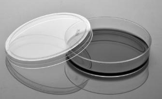 100mm细胞培养皿