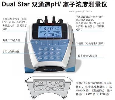 D10P-13氟离子测量仪