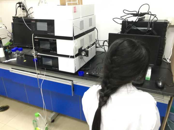 二元高压梯度液相色谱仪手动进样GI-3000-02GI通用仪器