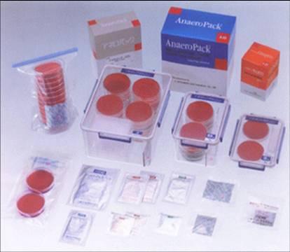 三菱2.5L厌氧产气袋、氧气指示剂、密封培养罐 国内总代理