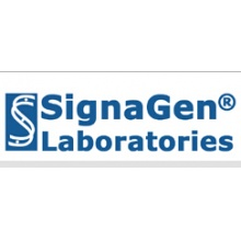 Signagen/ARHGEF12 Adenovirus/Category: Ready to Package Adenovirus/