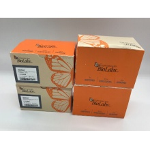 NEB/NEBNext® Q5® Hot Start HiFi PCR Master Mix/M0543S/50 reactions