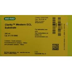 Clarity™ Western ECL Substrate, 200 ml - 1705060