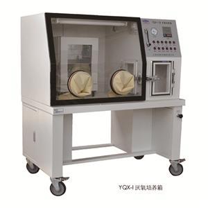 厌氧培养箱YQX-I细菌培养箱报价