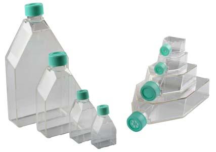 12.5平方厘米细胞培养瓶