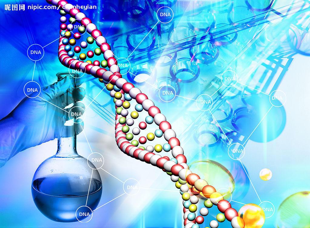 基因编辑技术服务