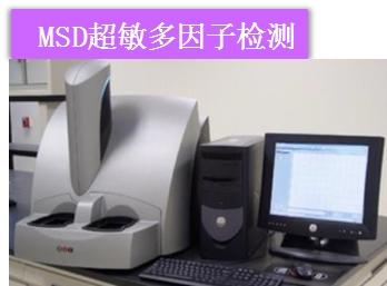MSD 超敏多因子电化学发光检测