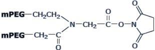 Y型聚乙二醇NHS酯