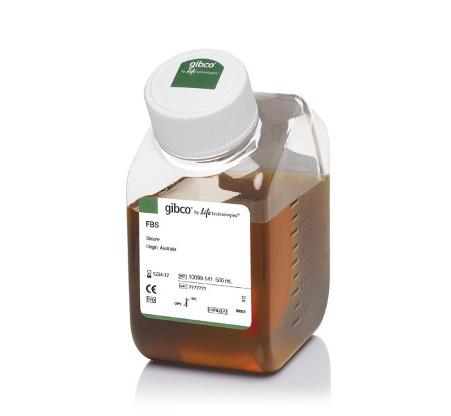 GIBCO 10099141 澳洲胎牛血清 原装正品