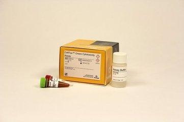 普洛麦格Promega E1910荧光素酶报告基因检测  专业代理progema全线产品