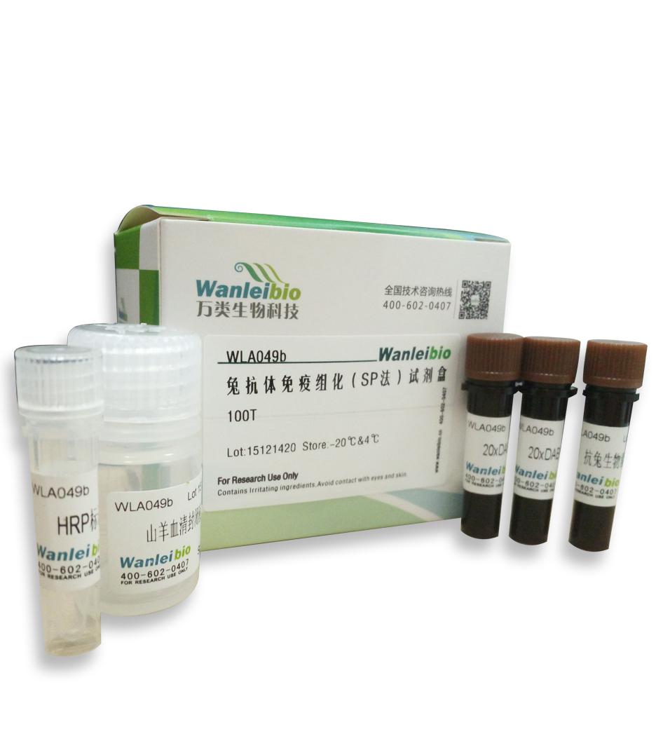 兔抗体免疫组化(SP法)试剂盒