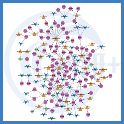 转录因子调控靶基因分析