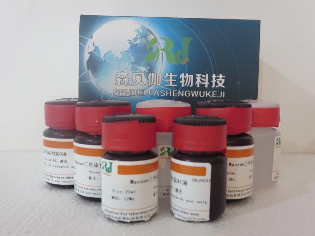 细胞周期与细胞凋亡检测试剂盒