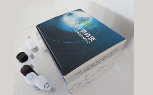 绵羊雌二醇(E2)ELISA试剂盒厂家