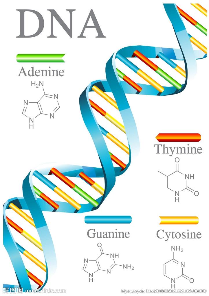 DNA合成 引物合成 Oligo合成