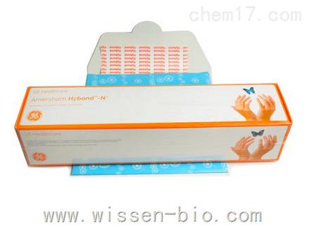 GE尼龙膜Amersham尼龙膜Hybond-N+ RPN303B