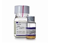 间充质干细胞分化试剂盒