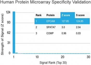 NSJ/Anti-EpCAM Antibody (Extracellular domain) [clone EGP40/1372] (V3525)/V3525SAF-100UG/ 100 ug