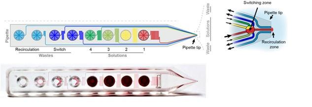 Biopen 多通道单细胞微流控给药控制系统