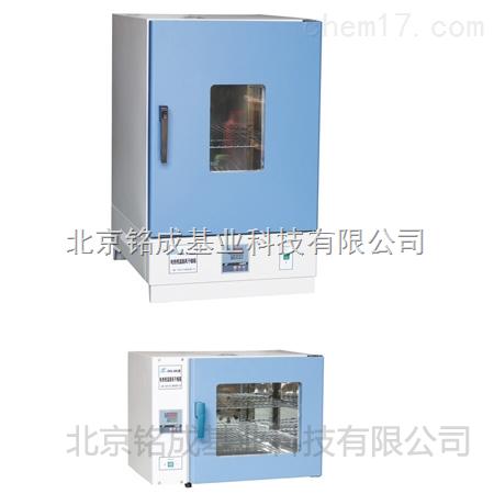铭成基业供应电热恒温鼓风干燥箱DHG-9101-0