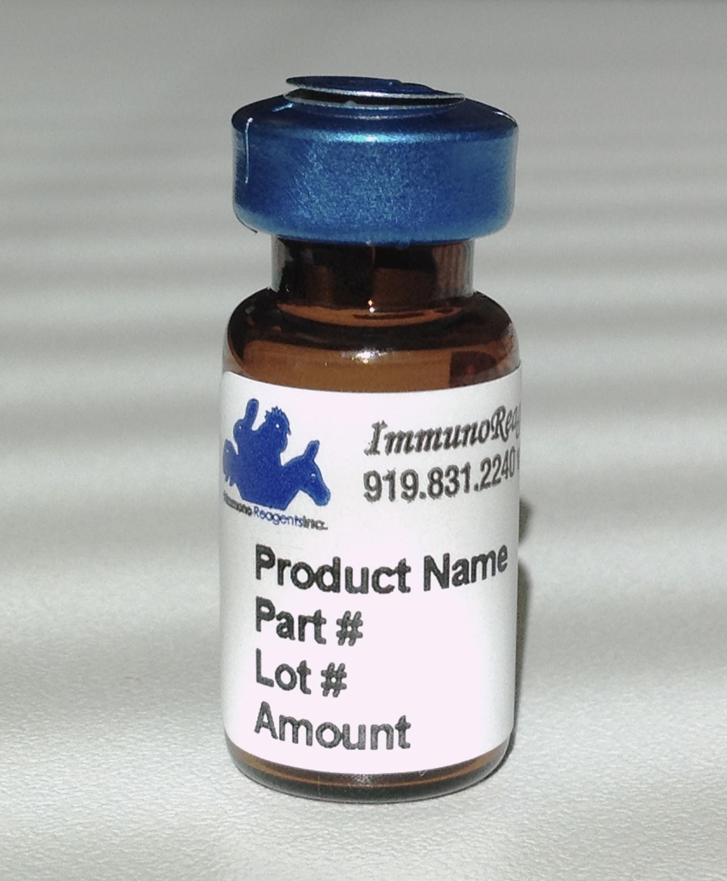 immunoreagents/Goat anti-Bovine IgG (H&L) - Affinity Pure/2.0 mg/GtxBo-003-D