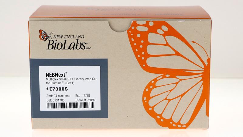 NEB/NEBNext® Multiplex Small RNA Library Prep Set for Illumina® (Set 1)/E7300S/96 reactions