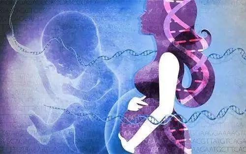 国产第三代基因测序仪可成功用于无创产前检测