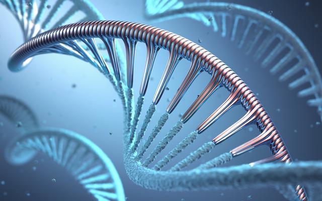 将深度学习的能量带到基因组学,Deep Genomics获1300万美元融资