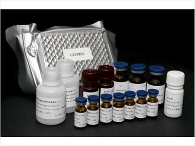 大鼠MIP-3β酶联免疫检测试剂盒