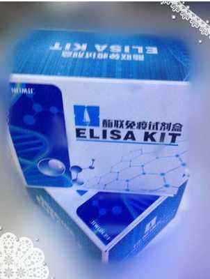 β-EP,猪β内啡肽ELISA试剂盒