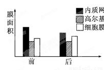 烃类分析氧化铝色谱柱