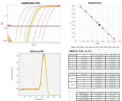 实时荧光定量PCR服务及半定量RT-PCR