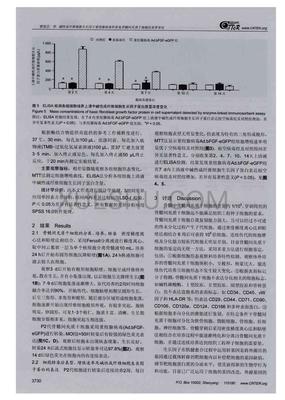 shRNA 质粒构建