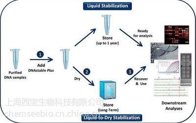 高纯度熊果酸提取、分离纯化技术分享