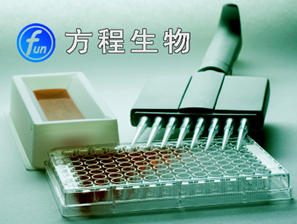 兔抗生物素抗体IgG