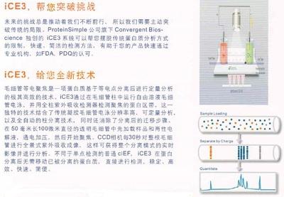 6cm透析夹子(适用于21mm,27mm,36mm透析袋)
