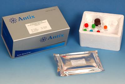 人可溶性破骨细胞异化因子(srankl)elisa试剂盒