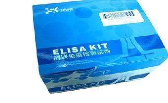 人 CD48 / SLAMF2 ELISA配对抗体