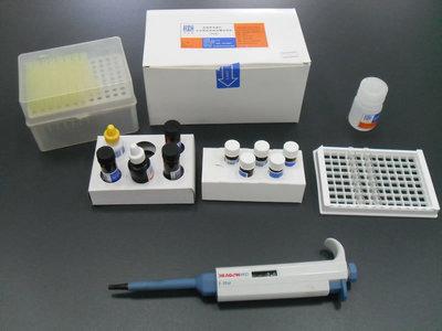 人类似cDNA顺序BC027382 ELISA Kit
