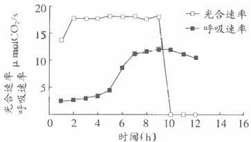 DiBAC4(3)膜电位荧光染料